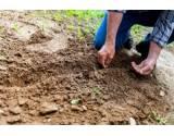 Rozsudok ESĽP vo veci odškodnenia súvisiaceho s prenájmom pôdy ide na revíziu