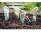 Predstierané služby ako úplatok