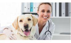 Návrh zákona ktorým sa mení zákon o veterinárnej starostlivosti